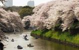 日本——東京大學