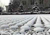 魅力華亭:這一場雪,驚豔了煤都,醉了華亭,美了這座城