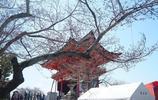 日本遊記 暢快遊玩清水寺 這是一座有著悠久歷史的寺院