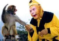 六耳獼猴比孫悟空更厲害?如來對觀音說了9個字,揭露兩者差距