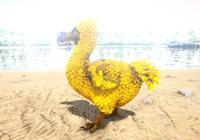 方舟:凶殘的黃金渡渡鳥,你有過被渡渡鳥打死的經歷嗎?