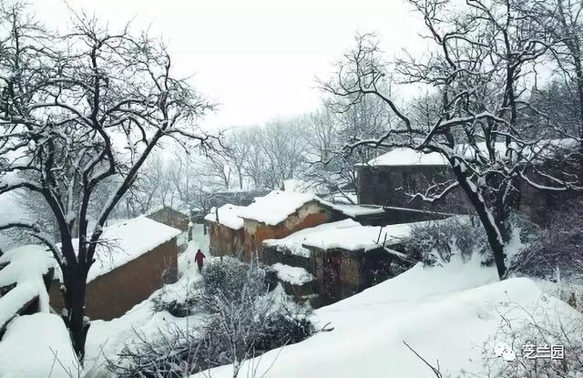 「散文」羅文彬丨童年的雪天