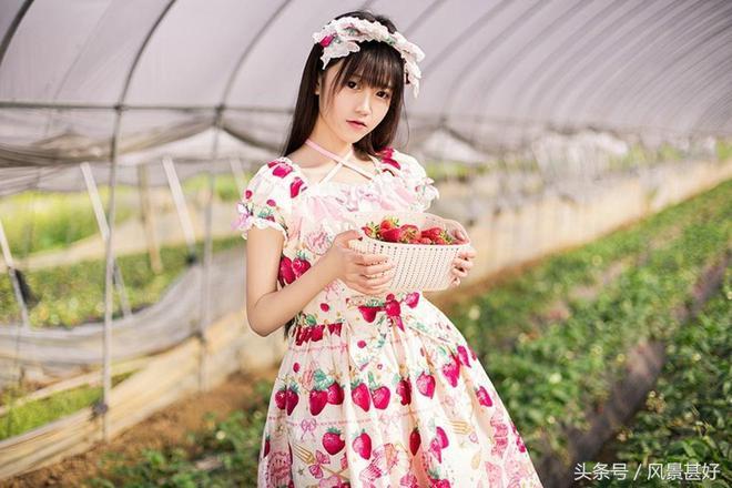 穿著草莓裙,在草莓大棚裡摘草莓,攝影師你的審美哪兒去了