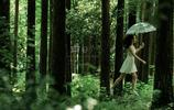 南嶺植物園:美女在樹林裡飛行
