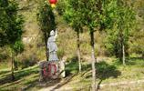 獨步太行之忠義藏山