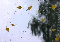 週三起,武漢都是雨雨雨……