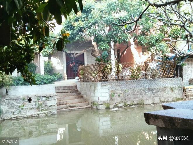 被譽為\嶺南水鄉,瀛洲古寨\的村落 廣州小洲村