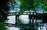 人間天堂,西湖美景,鏡頭下的西湖