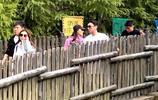 日本大阪偶遇王思聰和女友陳雅婷 一副熱戀的樣子超甜