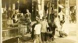 老照片:1930年前後廣東街頭的景物照