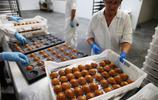 法國的糕點製作廠