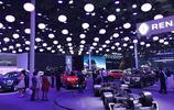 2017 上海車展——東風雷諾展臺
