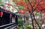 成都最美的私家園林,免費對遊客開放,連停車也不要錢