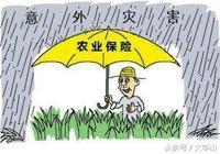 農業保險,該改變了