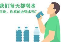 【健康】每天的第一杯水,應該怎麼喝?喝水養生記住這4個數!