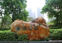 這麼美!!!惠州新湖公園,你不來嗎?