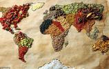 盤點4個國家的國菜,前3個國家顯而易選, 網友:中國的太難選