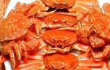 外形猶如熟透草莓的螃蟹——草莓蟹!