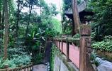 登山賞景,遊古寺古蹟,成都郊外的這處小眾免費景點值得一去
