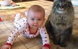 11張超可愛的貓咪和小寶寶的合照,貓咪:小鏟屎的以後由我罩著了