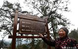 重慶75歲老奶奶獨居深山,與狗為伴,不離不棄,只想完成一個心願