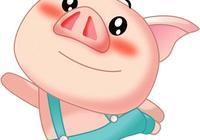 2017年感情運最好的生肖——生肖豬