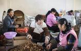 90後女孩改變一個村 和94歲奶奶直播賣核桃帶動2萬婦女就業