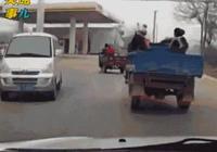 一組動圖警示你:鄉間小道危機四伏 切記進村降低車速