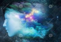 動物的意識的定義-意識的時空理論