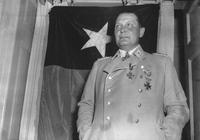 戈林小傳:希特勒的接班人,成也空軍,敗也空軍