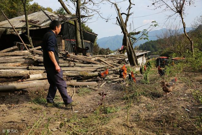90後農村女孩患病醫院讓拉回家,父母花100萬給她第二次生命