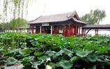 大明湖 三:位於濟南市歷下區,是由濟南眾多泉水匯流而成