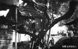 廣東老照片:1930年的羅定街頭與農村景象