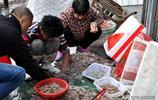 漁民出海歸來 看看青島本地兩種小海鮮 一斤十多塊錢 燉菜提鮮好