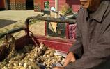 實拍:農村大集的這些小生意沒人討價還價,他們最值得讓人尊重