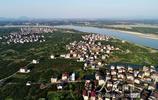 江西金溪:蜜桔果樹連成片 產業興村村更美