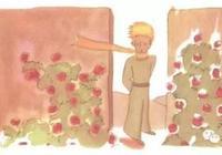 讀《小王子》書,理解身邊的小王子,找回心中赤子之心