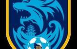 2019賽季中國足球甲級聯賽各球隊介紹,你支持哪支球隊?