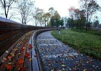 秋風捲起了思念,入夢一場雨落淒涼