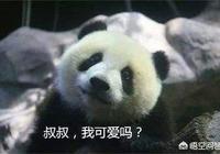 熊貓在被人類收編以前是怎麼躲過野獸的攻擊並生存下來的,它有什麼必殺技嗎?