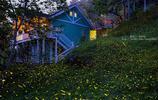 「風知玩攝影」美麗的螢火之森,螢火、森林、軌道,夢幻極了!