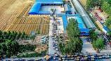 河南滑縣:農民收穫小麥直接拉這裡比市場貴一毛,每畝增收百元