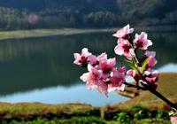 納蘭性德最精美的詩詞,完美繼承了柳永宋詞婉約風格
