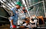 越南今年對美國出口將超越意大利,成為對美出口的前7個國家之一