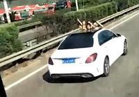 危險!小車高速上開天窗 3小孩探出天窗擺造型拍照