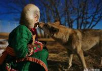 內蒙古20歲養狼少女成網紅,用嘴親喂8只狼嚇走3任男友