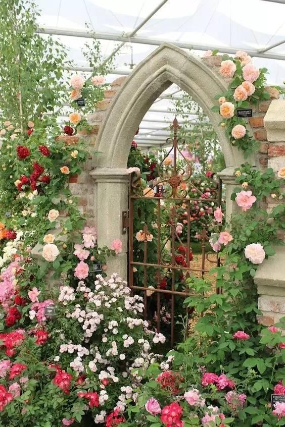 花境 · 群體之美