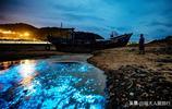 """每到夏季,臺海水面便會出現""""藍眼淚""""奇觀,美得不可方物"""