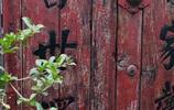 北京這些最古老的元朝衚衕現在什麼樣?沒想到竟然這麼美