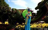 洛陽王城公園拍古裝美女,真是景美、人更美!